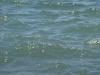 Wasser_Textur_A_P5234482