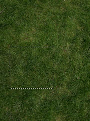 Ausschnitt für die Grastextur