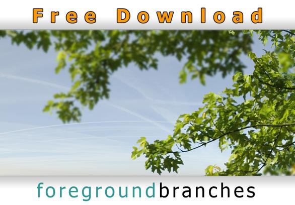 Freigestellte-Baumaeste-Architekturvisualisierung-Kostenloser-Download