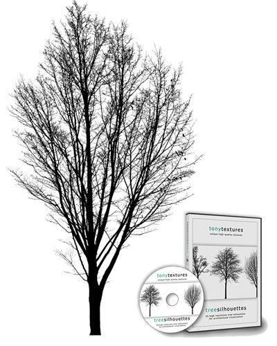 06_Freigestellte-Baum-Staffage-Silhouette-zur-Architektur-Visualisierung