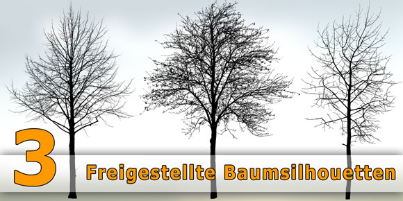 Freigestellte-Architektur-Bäume-Kostenloser-Download-PNG_580