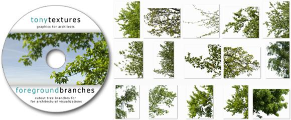 BONUS_Freigestellte-Baum-Aeste-Download