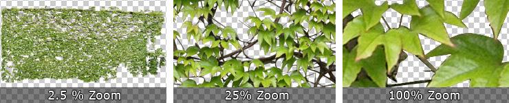 150-740_High-Quality-Texturen-Freigestellter-PflanzenV1