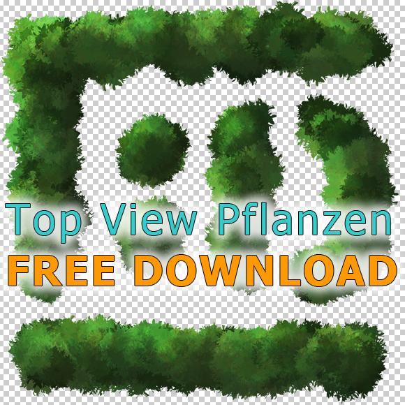 Baum-Pflanzen-Aufsicht-Freigestellt-Grundriss-PNG-Kostenloser-Download