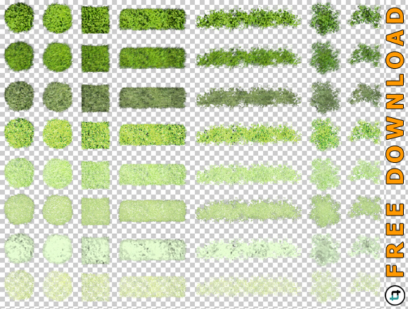 Vegetation-PNG-Freigestellt-Download-Architektur