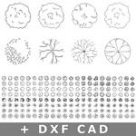 150-CAD-DXF-Pflanzen-Symbole-Architektur-Grundriss