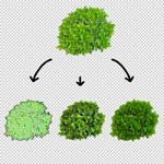 150-Photoshop-Filter-Pflanzen-Erstellen-Zeicheneffekt