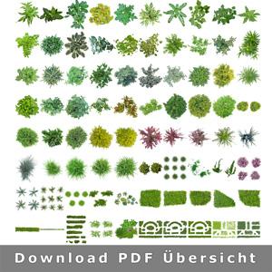 Uebersicht-Pflanzen-Landschaftsgestaltung-CAD-Grafik